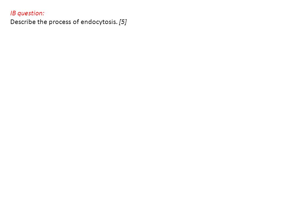 IB question: Describe the process of endocytosis. [5]
