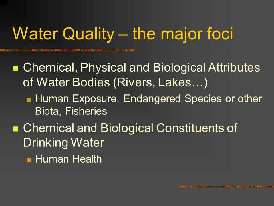 Water Quality – the major foci Chemical, Physical and Biological Attributes of Water Bodies (Rivers, Lakes…) Human Exposure, Endangered Species or other Biota, Fisheries Chemical and Biological Constituents of Drinking Water Human Health