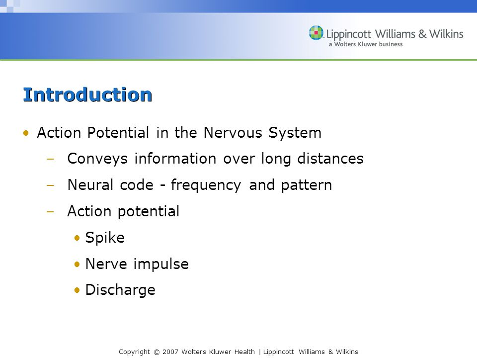 Copyright © 2007 Wolters Kluwer Health | Lippincott Williams & Wilkins Introduction Action Potential in the Nervous System –Conveys information over l