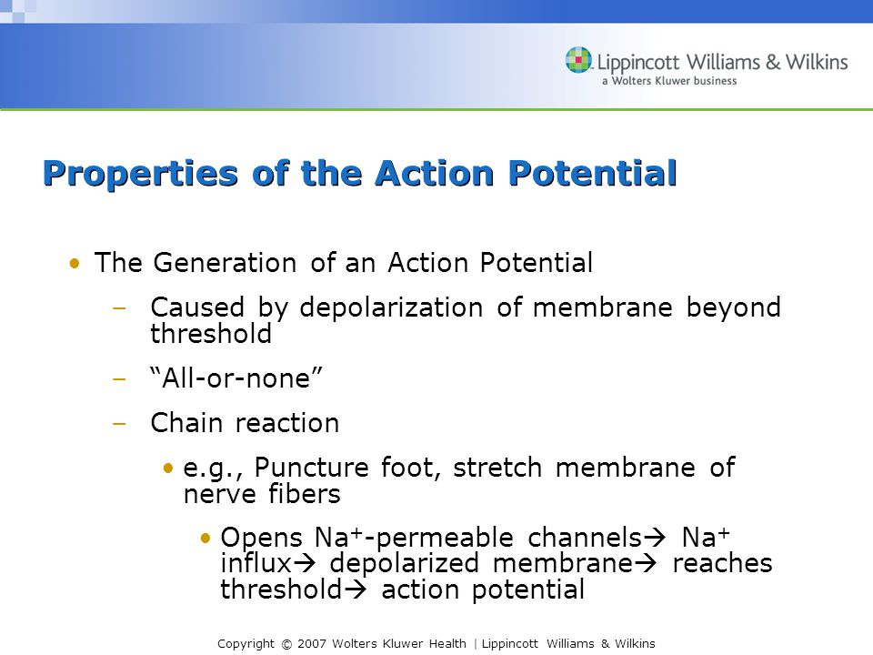 Copyright © 2007 Wolters Kluwer Health | Lippincott Williams & Wilkins Properties of the Action Potential The Generation of an Action Potential –Cause