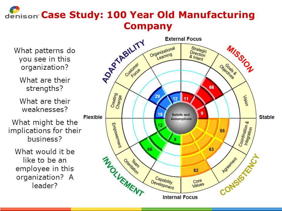 Case Study: 100 Year Old Manufacturing Company What patterns do you see in this organization? What are their strengths? What are their weaknesses? Wha