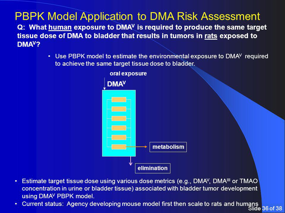 Slide 36 of 38 Estimate target tissue dose using various dose metrics (e.g., DMA V, DMA III or TMAO concentration in urine or bladder tissue) associated with bladder tumor development using DMA V PBPK model.