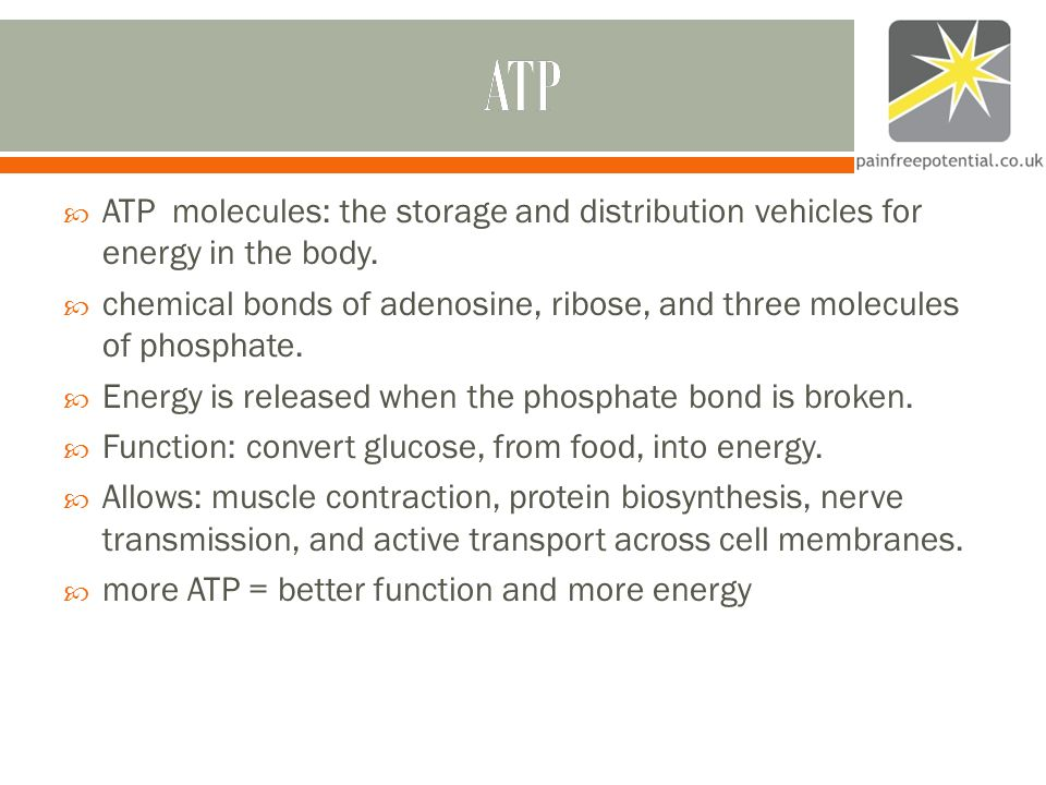 ATP  ATP molecules: the storage and distribution vehicles for energy in the body.