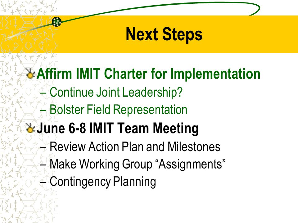 Next Steps Affirm IMIT Charter for Implementation –Continue Joint Leadership? –Bolster Field Representation June 6-8 IMIT Team Meeting –Review Action