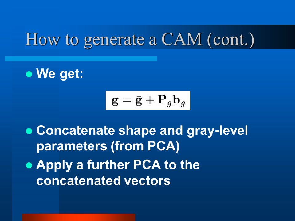 How to generate a CAM (cont.) We get: Concatenate shape and gray-level parameters (from PCA) Apply a further PCA to the concatenated vectors