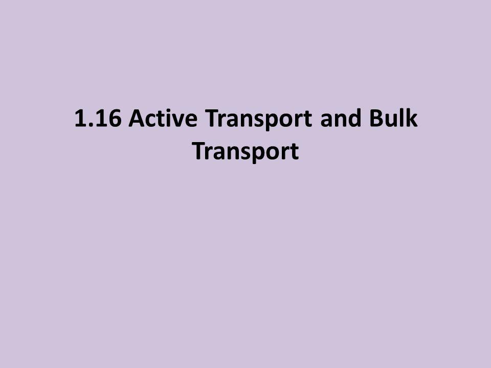 1.16 Active Transport and Bulk Transport