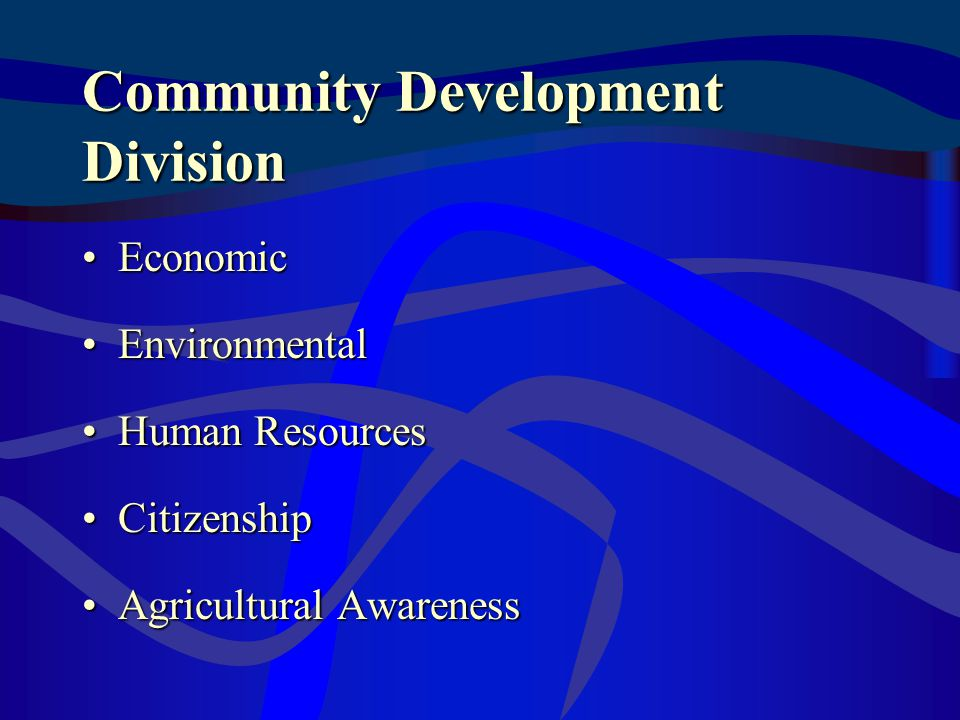 Community Development Division EconomicEconomic EnvironmentalEnvironmental Human ResourcesHuman Resources CitizenshipCitizenship Agricultural AwarenessAgricultural Awareness