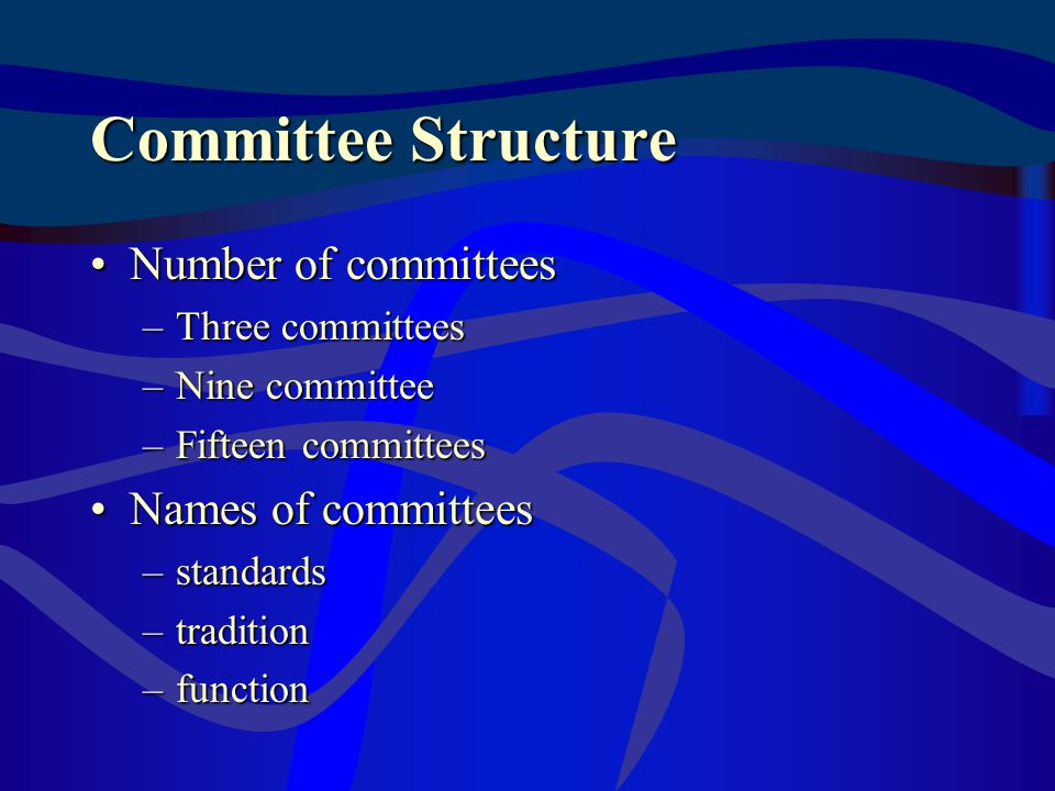 Committee Structure Number of committeesNumber of committees –Three committees –Nine committee –Fifteen committees Names of committeesNames of committees –standards –tradition –function
