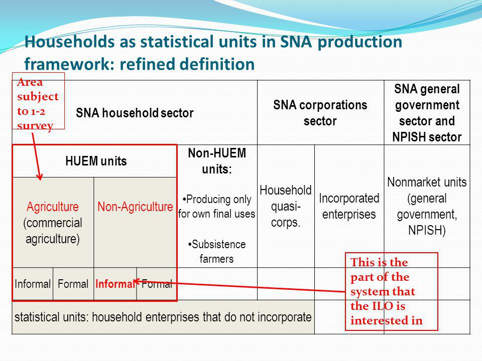 Households as statistical units in SNA production framework: refined definition SNA household sector SNA corporations sector SNA general government sector and NPISH sector HUEM units Non-HUEM units: Household quasi- corps.
