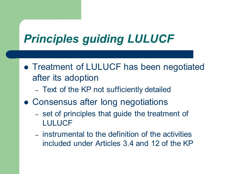 Principles guiding LULUCF Treatment of LULUCF has been negotiated after its adoption – Text of the KP not sufficiently detailed Consensus after long negotiations – set of principles that guide the treatment of LULUCF – instrumental to the definition of the activities included under Articles 3.4 and 12 of the KP