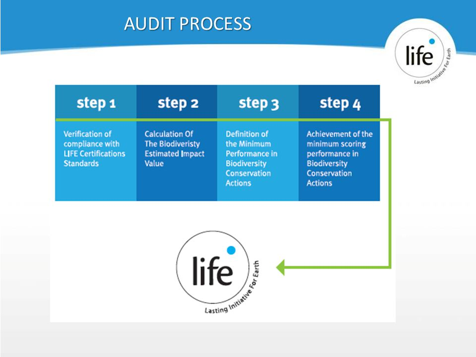 Slide2239 AUDIT PROCESS