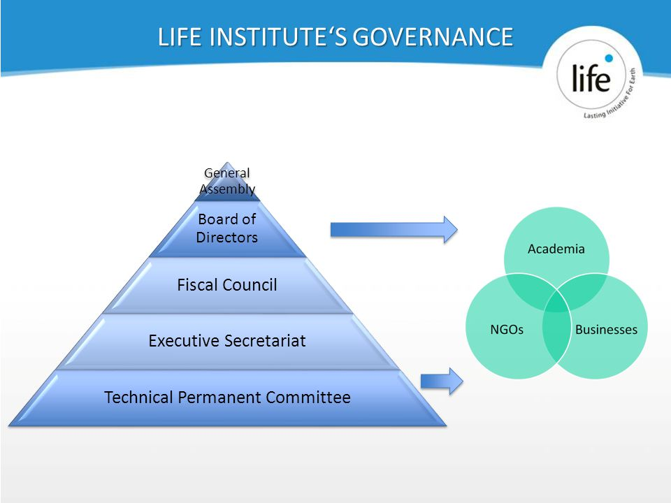 Slide439 LIFE INSTITUTE'S GOVERNANCE General Assembly Board of Directors Fiscal Council Executive Secretariat Technical Permanent Committee