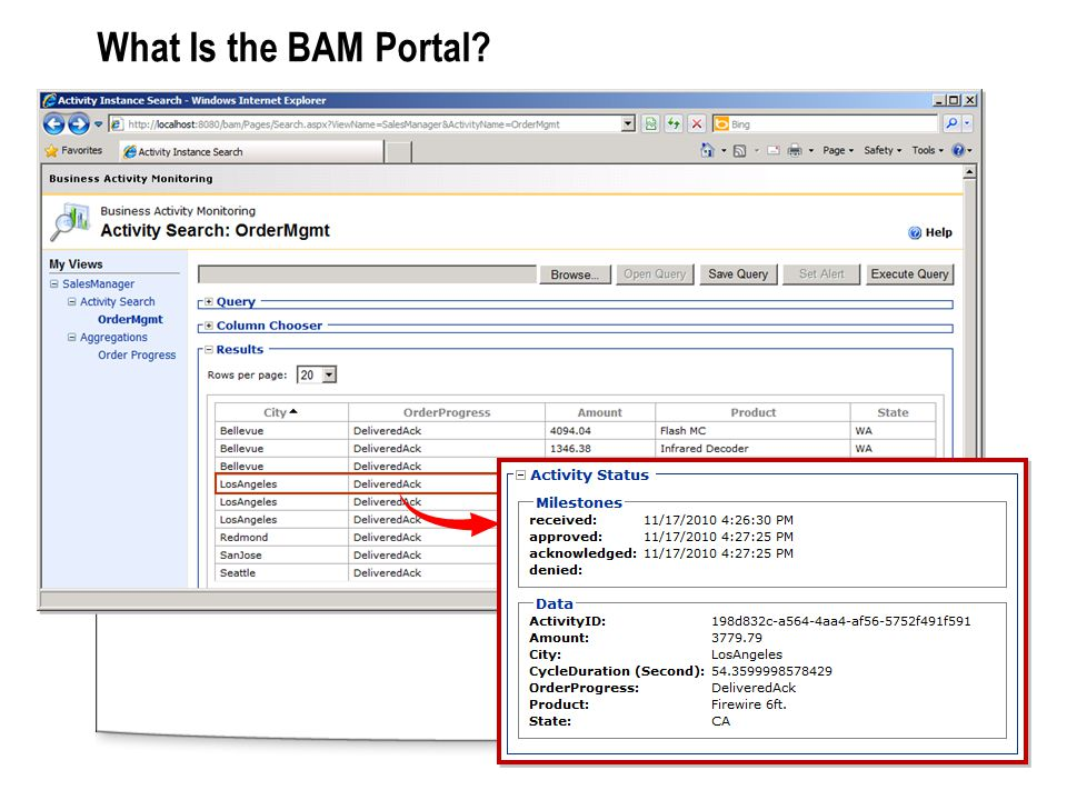 What Is the BAM Portal?
