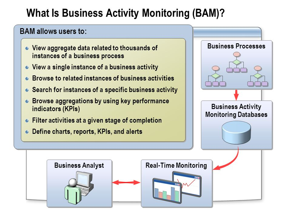What Is Business Activity Monitoring (BAM).