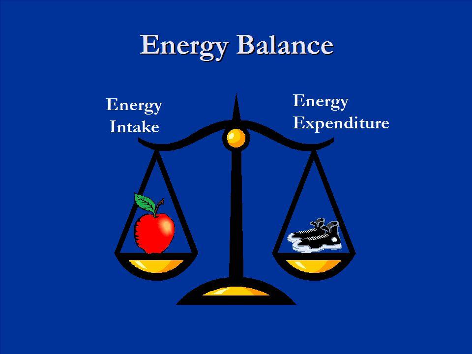 Energy Balance Energy Intake Energy Expenditure