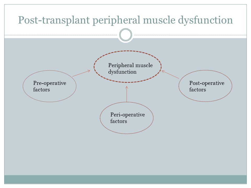 Post-transplant peripheral muscle dysfunction Peripheral muscle dysfunction Pre-operative factors Post-operative factors Peri-operative factors