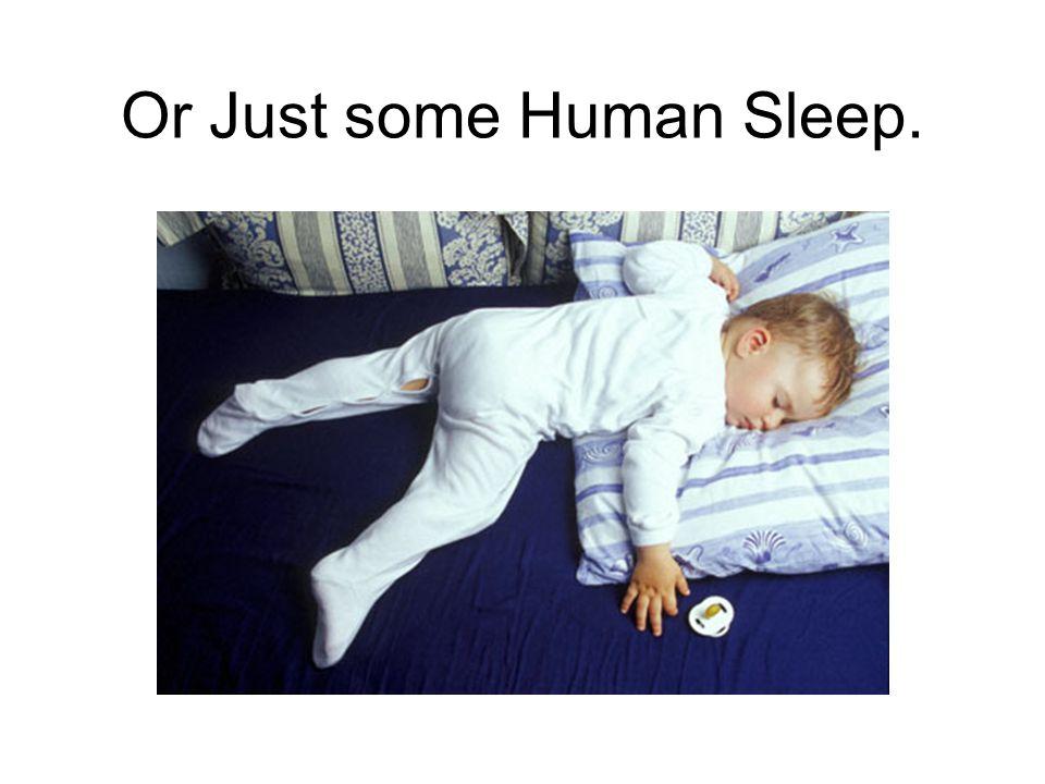 Or Just some Human Sleep.