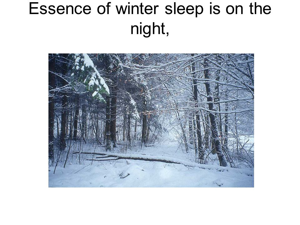 Essence of winter sleep is on the night,