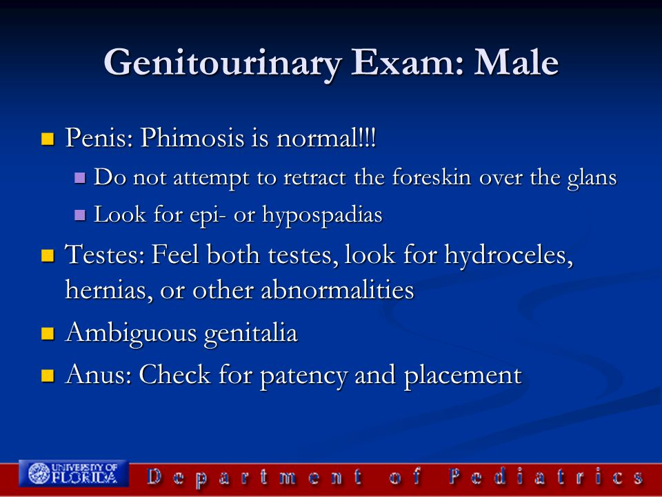 Genitourinary Exam: Male Penis: Phimosis is normal!!! Penis: Phimosis is normal!!! Do not attempt to retract the foreskin over the glans Do not attemp