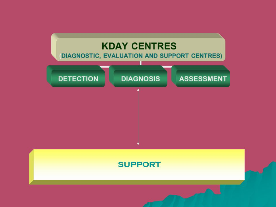 KDAY CENTRES (DIAGNOSTIC, EVALUATION AND SUPPORT CENTRES) DETECTIONDIAGNOSISASSESSMENT SUPPORT