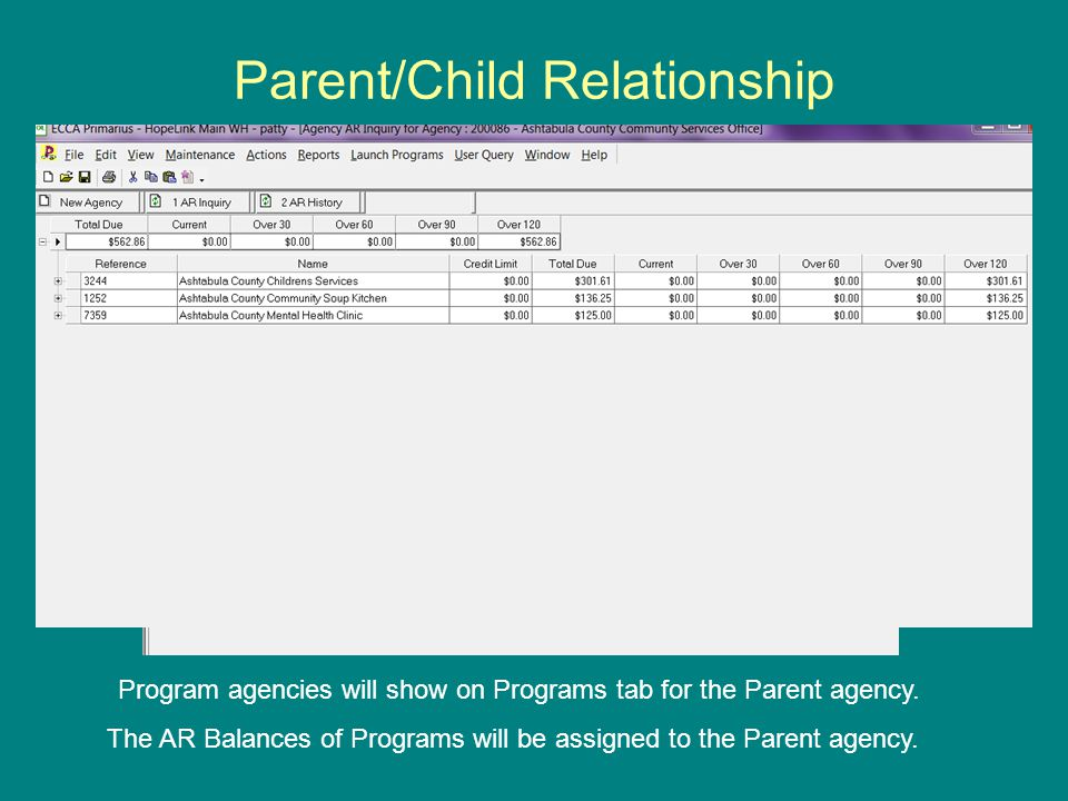 Program agencies will show on Programs tab for the Parent agency.