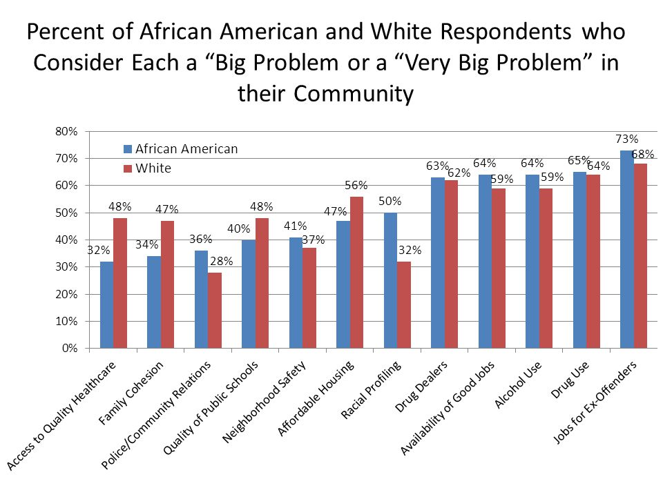 "Percent of African American and White Respondents who Consider Each a ""Big Problem or a ""Very Big Problem"" in their Community"