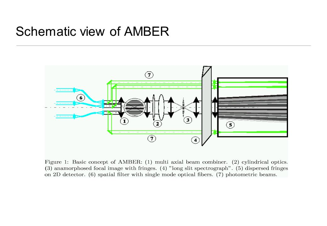 Schematic view of AMBER