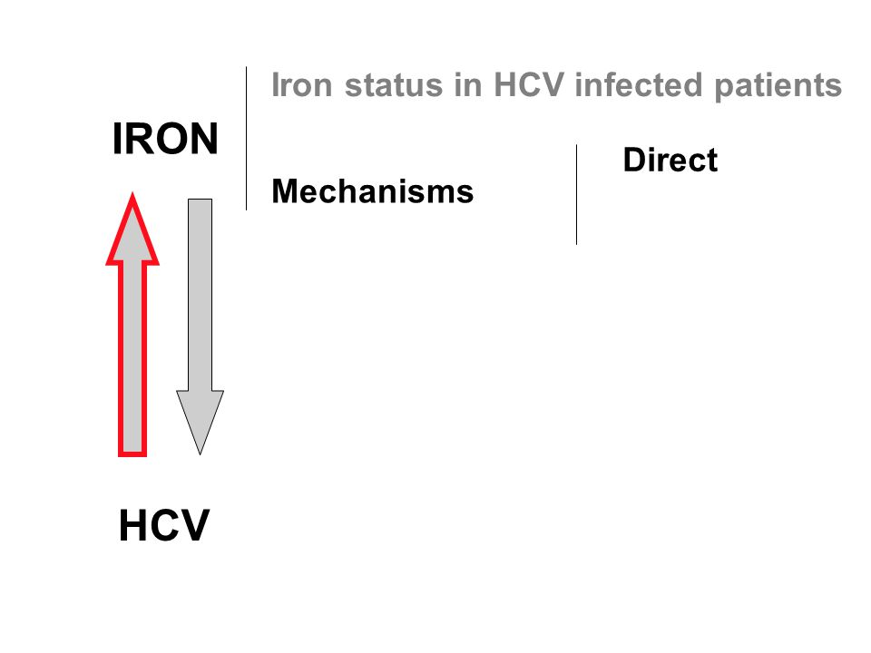 IRON HCV Iron status in HCV infected patients Mechanisms Direct
