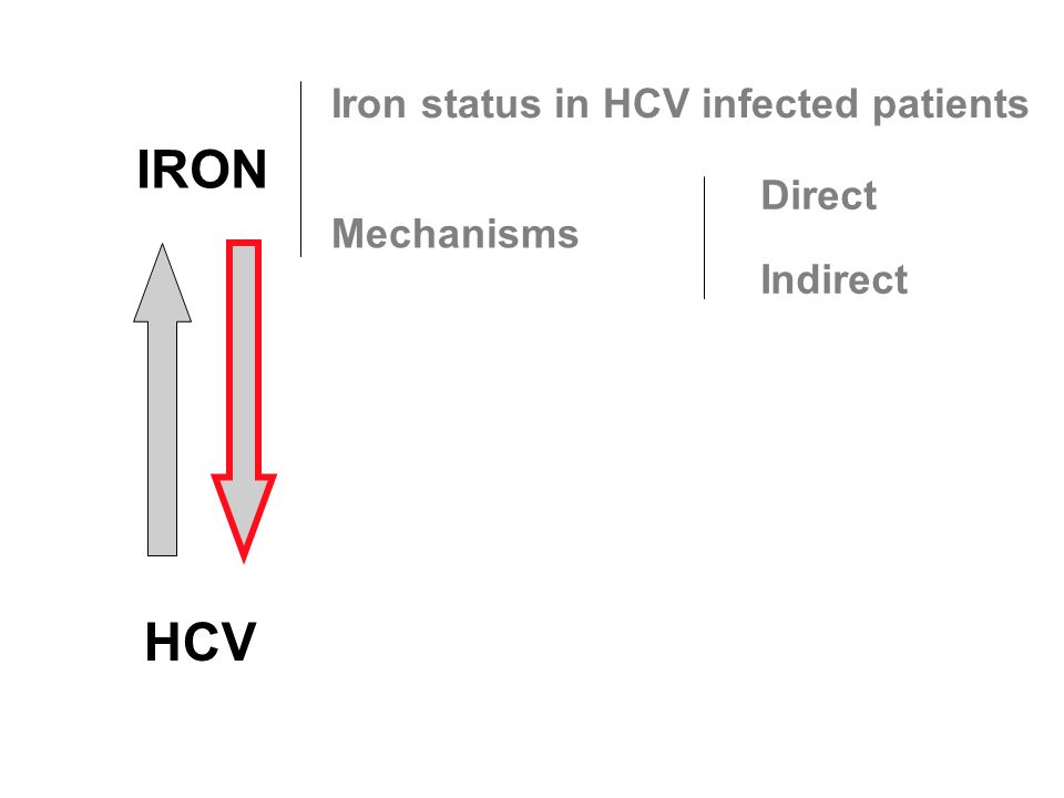 IRON HCV Iron status in HCV infected patients Mechanisms Direct Indirect