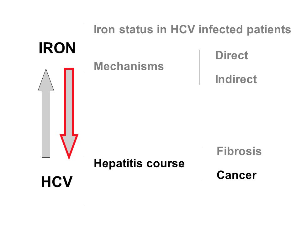 IRON HCV Hepatitis course Fibrosis Cancer Iron status in HCV infected patients Mechanisms Direct Indirect
