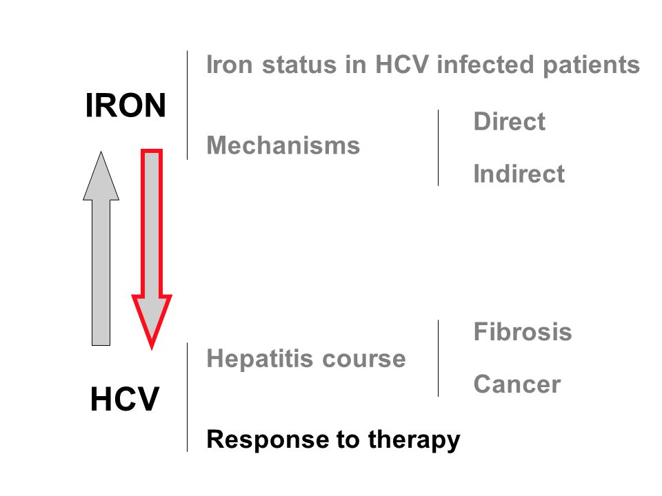 IRON HCV Hepatitis course Response to therapy Iron status in HCV infected patients Mechanisms Fibrosis Cancer Direct Indirect
