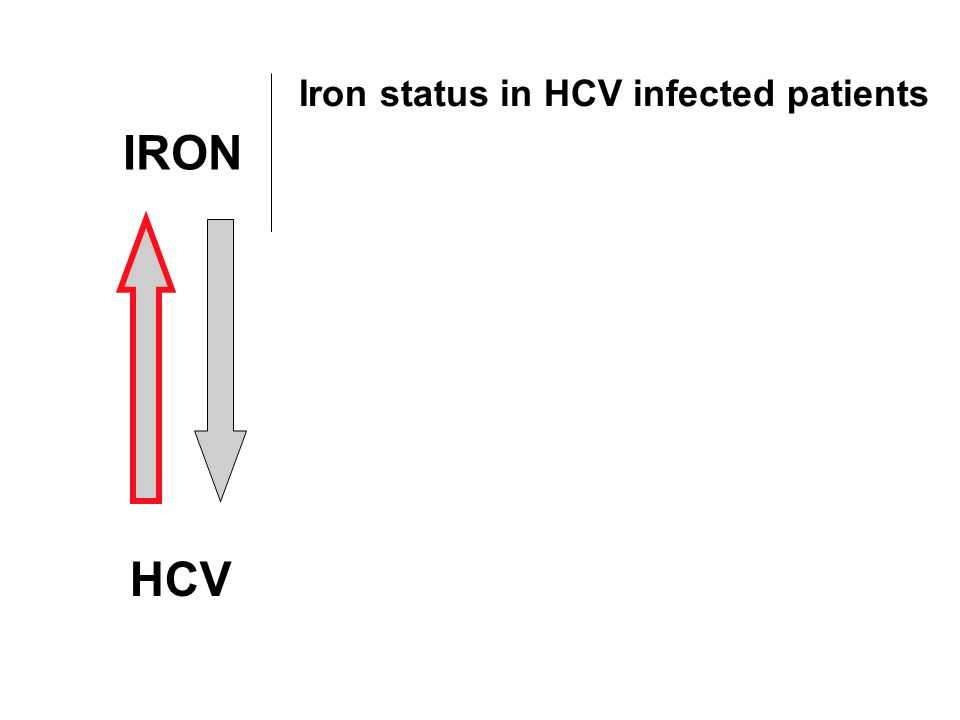 IRON HCV Iron status in HCV infected patients