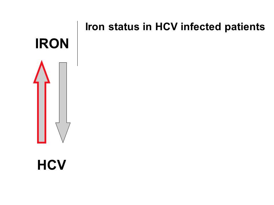 Serum iron-related indices in CHC Iron25 - 59 % Ferritin25 - 60 % Transferrin saturation10 - 25 % Di Bisceglie AM, Gastroenterology 1992;102:2108-13 Alla V, Sem Liver Dis 2005;25:461-72