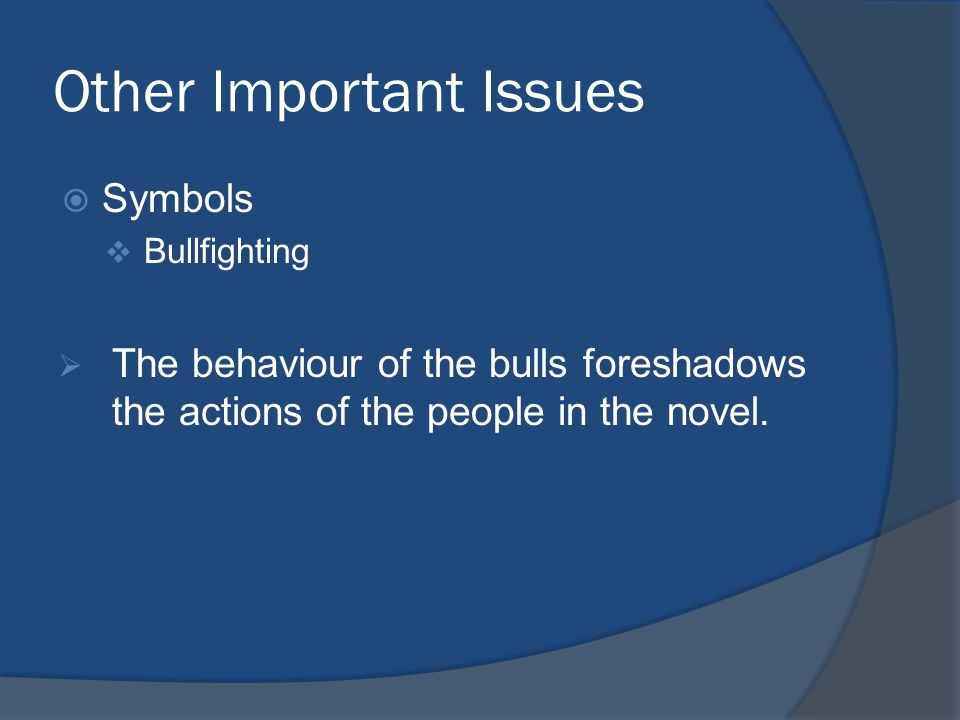 Other Important Issues  Symbols  Bullfighting  The behaviour of the bulls foreshadows the actions of the people in the novel.