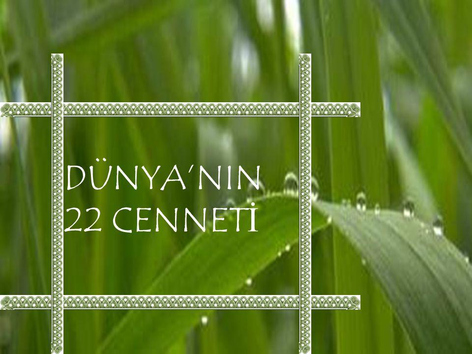 DÜNYA'NIN 22 CENNETİ