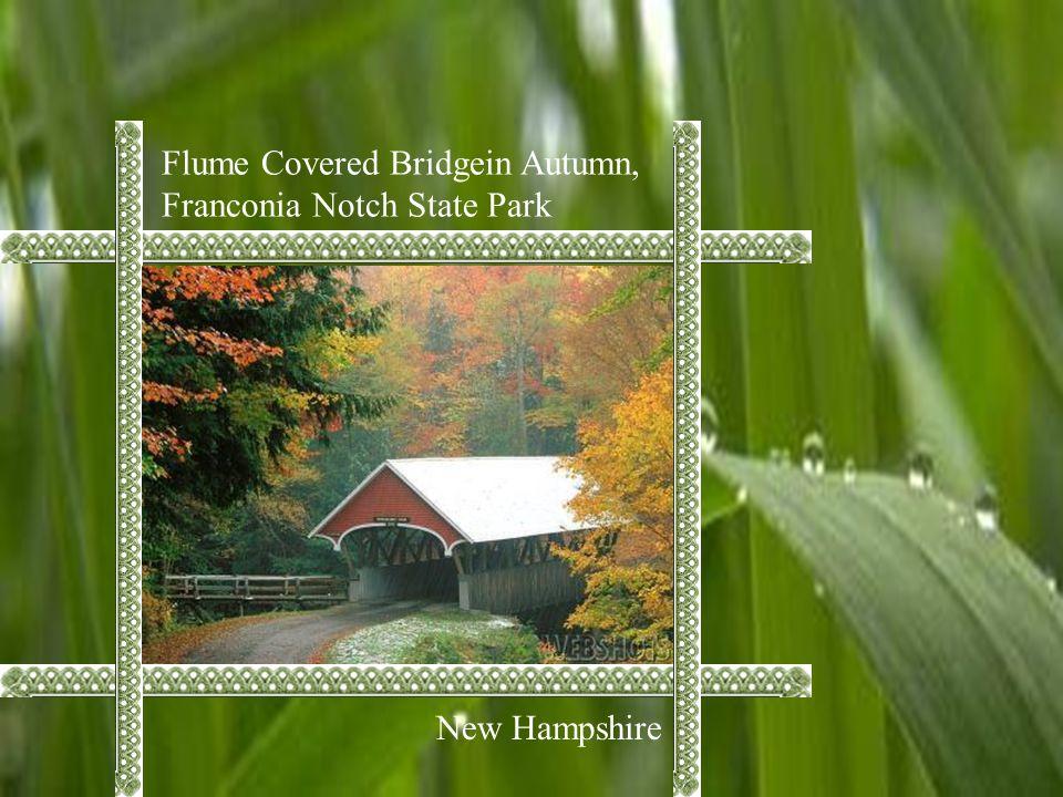 Flume Covered Bridgein Autumn, Franconia Notch State Park New Hampshire