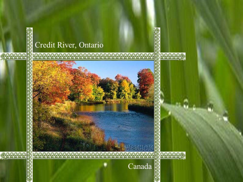 Credit River, Ontario Canada