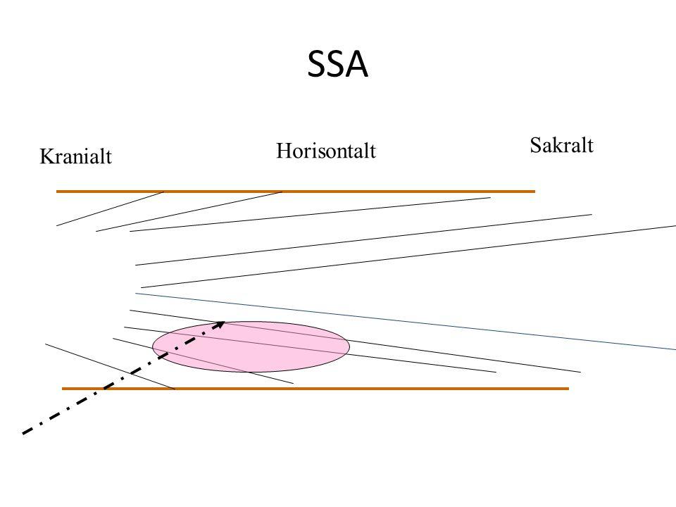 SSA Kranialt Sakralt Horisontalt