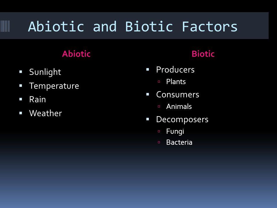Abiotic and Biotic Factors AbioticBiotic  Sunlight  Temperature  Rain  Weather  Producers  Plants  Consumers  Animals  Decomposers  Fungi  Bacteria