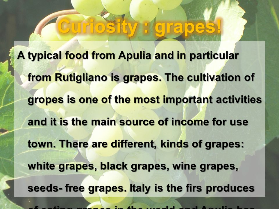 A typical food from Apulia and in particular from Rutigliano is grapes. The cultivation of gropes is one of the most important activities and it is th