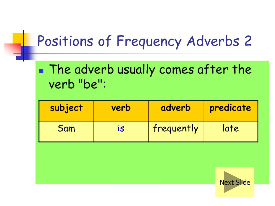 Positions of Frequency Adverbs 1 If the sentence has only one verb in it, we usually put the adverb in the middle of the sentence, i.e. after the subj