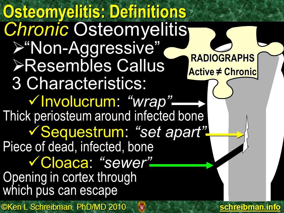 "©Ken L Schreibman, PhD/MD 2010 schreibman.info Osteomyelitis: Definitions Chronic Osteomyelitis   ""Non-Aggressive""   Resembles Callus 3 Characteri"