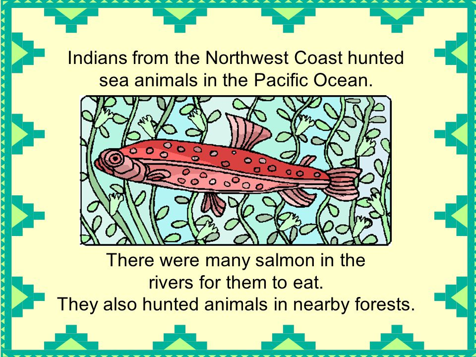 Indians from the Northwest Coast hunted sea animals in the Pacific Ocean. There were many salmon in the rivers for them to eat. They also hunted anima