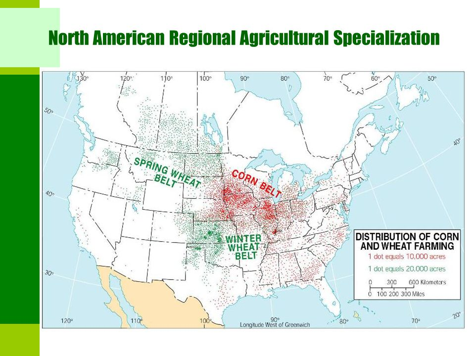 North American Regional Agricultural Specialization