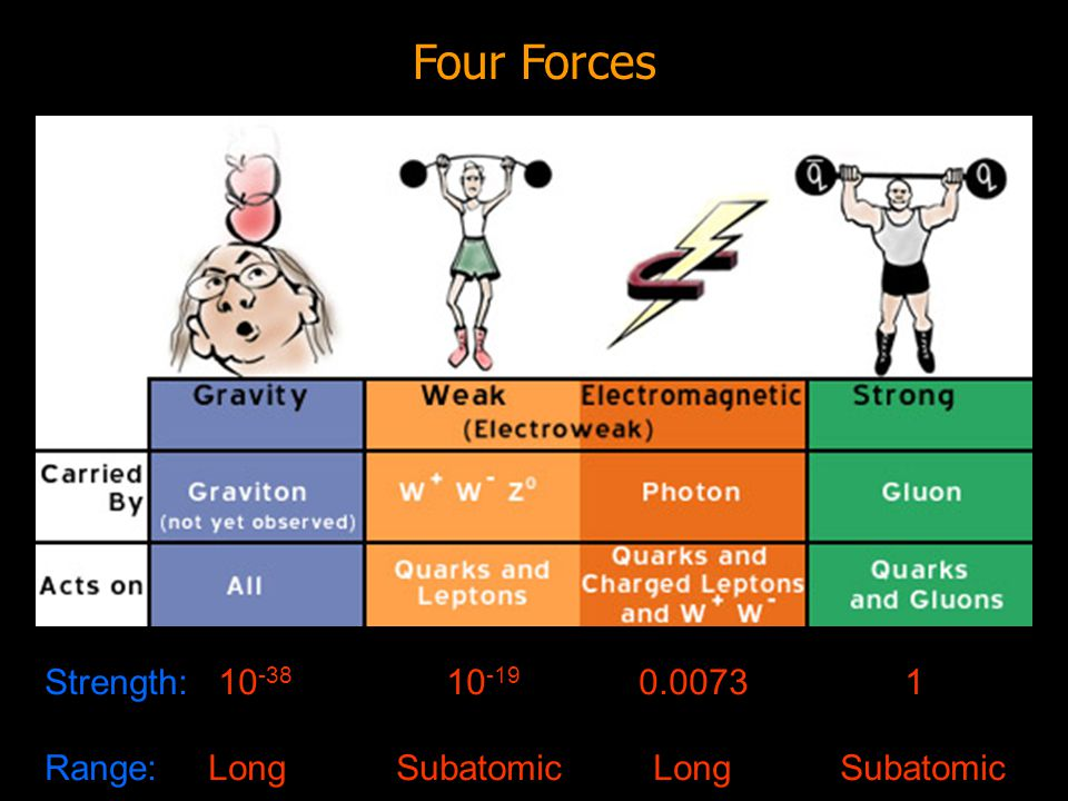 Atoms Strings BOTTOM UP Bosons Quarks Leptons Electrons
