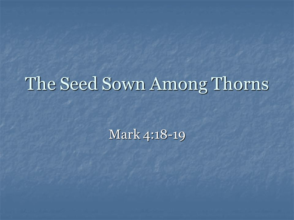 The Parable of the Sower Farmer = God, or people sharing the Gospel Farmer = God, or people sharing the Gospel Seed = the word of God Seed = the word of God Sowing of the seed = preaching God's word Sowing of the seed = preaching God's word Four effects of hearing the Gospel Four effects of hearing the Gospel The seed along the path The seed along the path The seed on the rocks The seed on the rocks The seed among thorns The seed among thorns The seed on good soil The seed on good soil