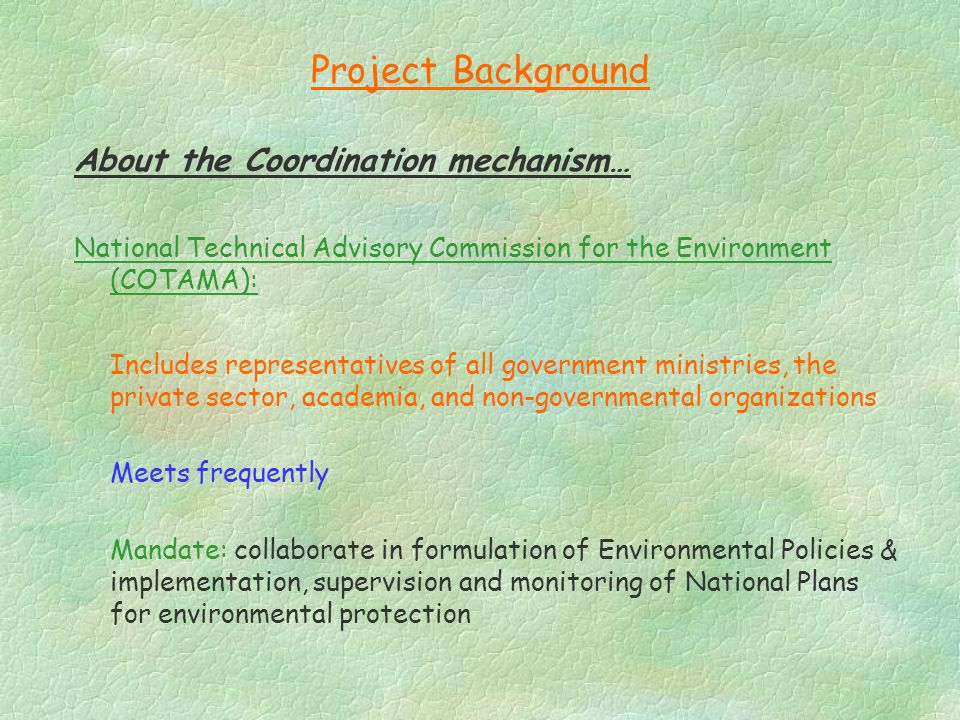 Project Background About the Coordination mechanism… National Technical Advisory Commission for the Environment (COTAMA): Includes representatives of all government ministries, the private sector, academia, and non-governmental organizations Meets frequently Mandate: collaborate in formulation of Environmental Policies & implementation, supervision and monitoring of National Plans for environmental protection