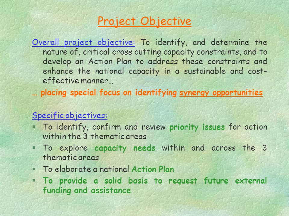 Project Objective Overall project objective: To identify, and determine the nature of, critical cross cutting capacity constraints, and to develop an Action Plan to address these constraints and enhance the national capacity in a sustainable and cost- effective manner… … placing special focus on identifying synergy opportunities Specific objectives: §To identify, confirm and review priority issues for action within the 3 thematic areas §To explore capacity needs within and across the 3 thematic areas §To elaborate a national Action Plan §To provide a solid basis to request future external funding and assistance