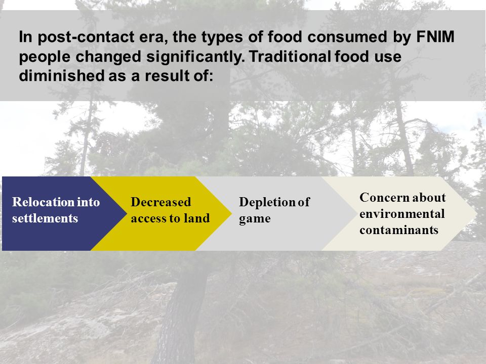 In post-contact era, the types of food consumed by FNIM people changed significantly. Traditional food use diminished as a result of: Relocation into