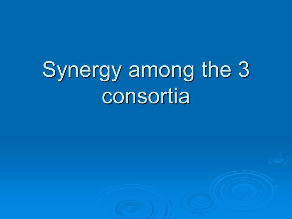 Synergy among the 3 consortia